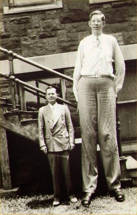 L'Uomo più Alto del Mondo con 2 metri 72 centimetri : Robert Pershing Wadlow
