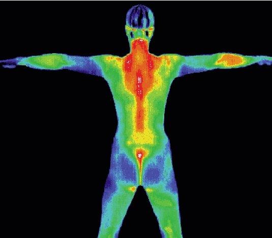 Fotocamera che può vedere attraverso le strutture all' interno del corpo umano