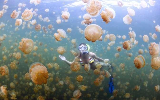 il lago delle meduse -