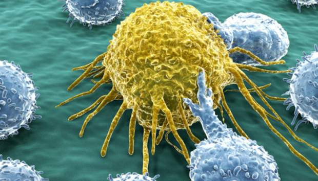 molecole suicide cancro
