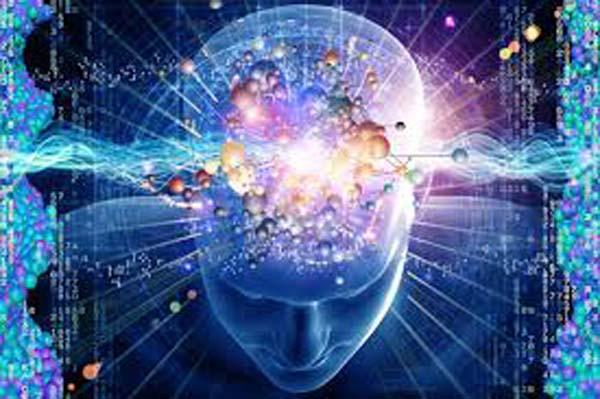 Il cervello delle persone più intelligenti hanno differenti connessioni cerebrali